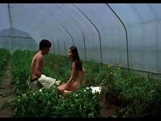 कोरियाई Catiii डोना बीएई Plumblossom 2000 Na बीएई Du